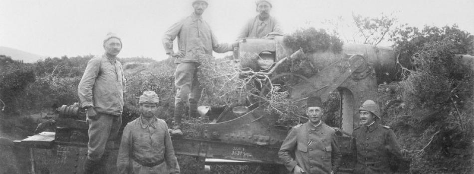 Çanakkale Cephesinde Anadolu Yakası Topları (Anadolu Boğaz Giriş Tabya ve Bataryaları)
