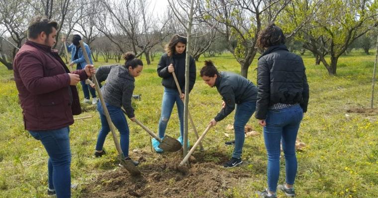 Ziraat Fakültesi Çiftliği Bitkisel Üretim ve Araştırma Birimi'nde Fidan Dikim Seferberliği